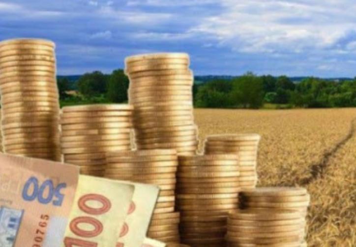 Підприємства Мінекономіки отримали 5,8 млрд збитків